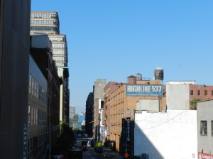New York 016
